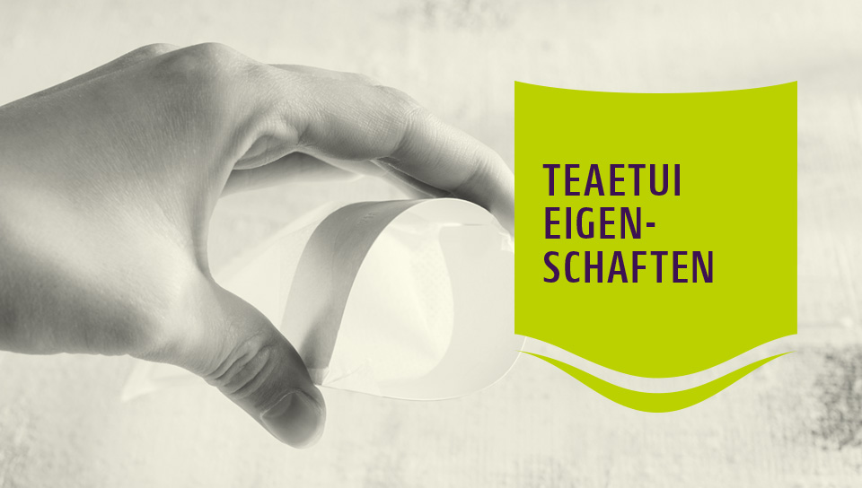 Teefilter aus nachhaltigem Material | TeaEtui